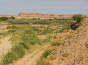 Gerald's and Paula's garden adjacent to the San Juan River