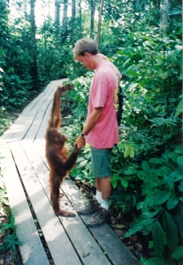 "My Son ""Dancing"" with a Juvenile Orangutan on the Island of Borneo"