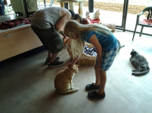 My Granddaughter at Kitty Carlton at Best Friends Animal Rescue Facility