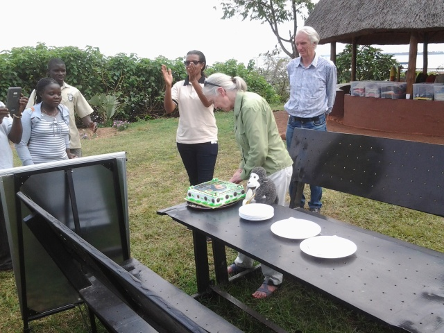 Dr. Jane Goodall Cutting Her Birthday Cake