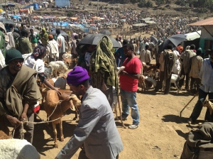 The Goat/Sheep Area in the Lalibela Saturday Market