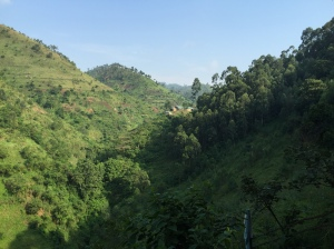The Batwa School as Seen from a Distance