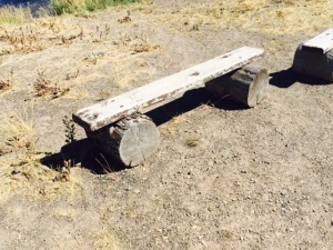 Simple Plank on Log Bench near Island Park ID