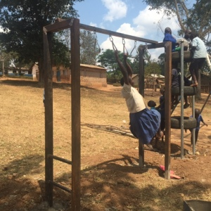 All Metal Monkey Ring Structure Installed near Masaka, Uganda