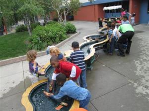 Children Enjoying an Outdoor River Tank